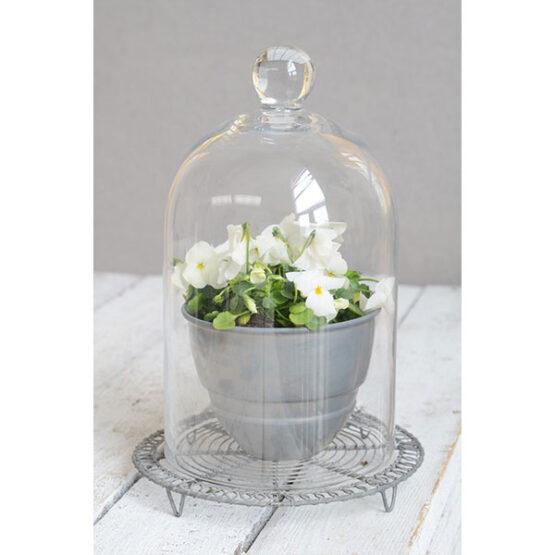 270-medium-glass-display-cloche-bell-jar-dome-28-cm-tall-danish-design-by-ib-laursen-2