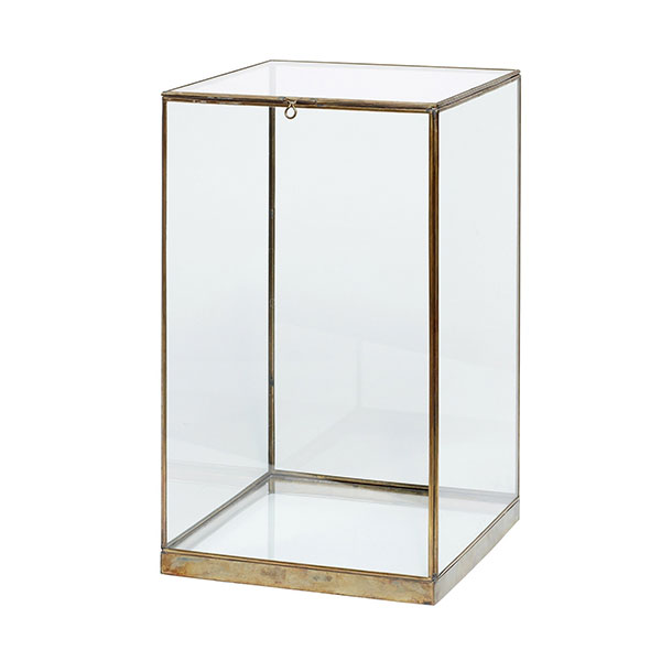 Small Glass And Brass Display Cover Dome With Lid Box 42