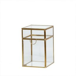 small-decorative-brass-and-glass-display-jewellery-trifle-boxe-with-lid-by-hubsch