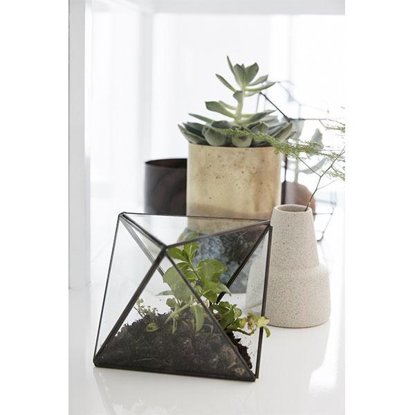 Terrarium Brass And Glass Plants Scandinavian Design Danish Nordic
