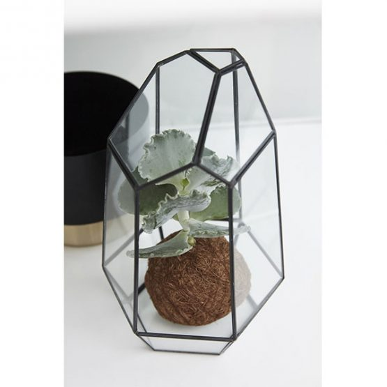 680-Tall-Terrarium-Brass-and-Glass-Plants-Scandinavian-Design-Danish-Nordic-by-Hubsch-2