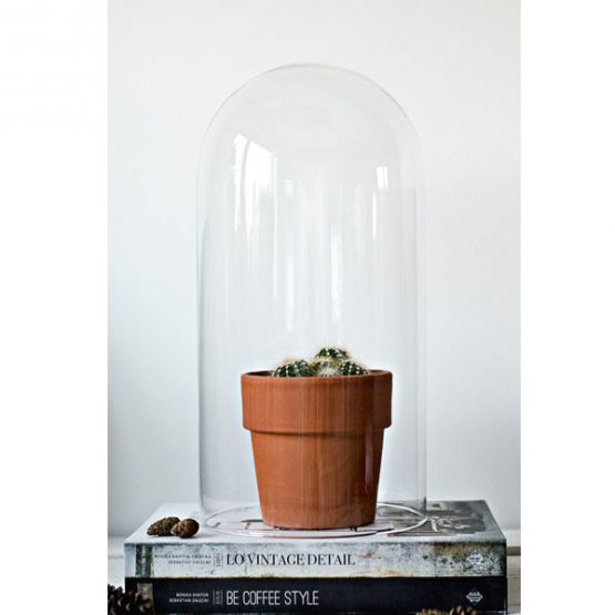 mouth-blown-clear-glass-circular-display-dome-cloche-bell-tall-40x20-cm