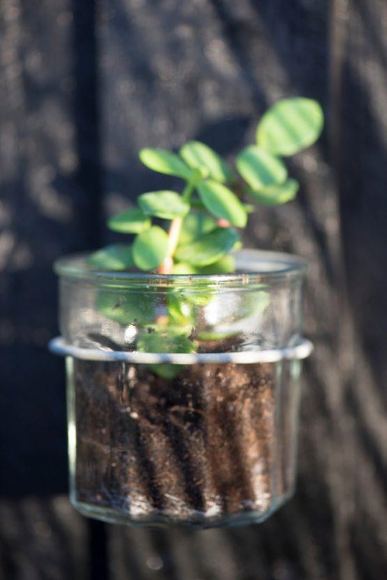 em_home-ib_laursen-wall-mounted-flower-pot-holder-grey-garden-outdoor-decor-indoor-3435-18_trend_1