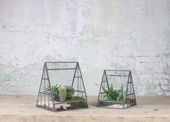 pasua-terrarium-planter-antique-zinc-glass-large-nkuku