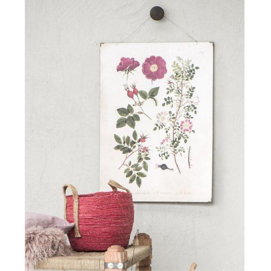 em_home-ib_laursen-roses-paper-poster-wall-home-decor-art-8251-00