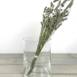handmade-mouth-blown-clear-glass-cylinder-vase-tall-20cm