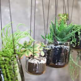 medium-glass-hanging-planters-translucent-aged-silver-finish-come-leather-tie-nkuku