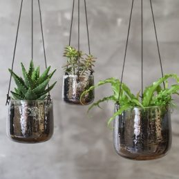 small-glass-hanging-planter-in-a-translucent-aged-silver-finish-by-nkuku