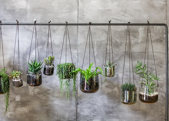 medium-glass-hanging-planters-translucent-aged-silver-finish-come-leather-tie-nkuku (3)