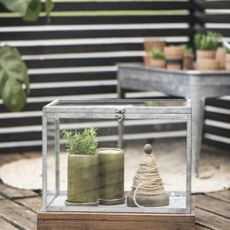 set-of-2-hotbed-display-glass-terrarium-trifle-box-by-ib-laursen