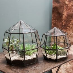 small-thika-terrarium-planter-with-a-geometric-metal-framework-by-nkuku