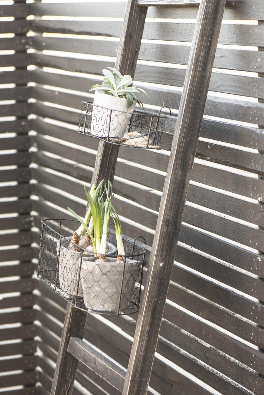 Big Metal Wire Hanging Basket / Pot Holder Garden Planter by Ib Laursen