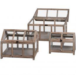 set-of-three-wooden-plant-terrarium-by-hill-interiors