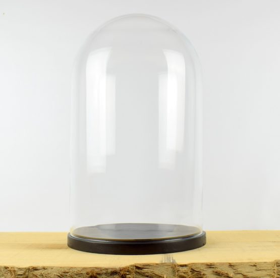 large-handmade-mouth-blown-glass-dome-with-wooden-base-52x31-cm
