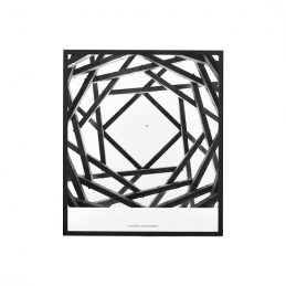 decorative-illustration-with-frame-by-anders-hvenegaard-black-white