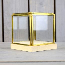 small-glass-and-brass-display-showcase-box-with-wooden-base