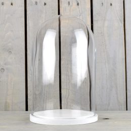 Small Glass Dome Display Cover Cloche White Wooden Base Height 27.5cm