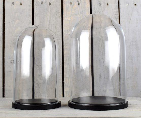 medium-glass-dome-display-cover-cloche-black-base