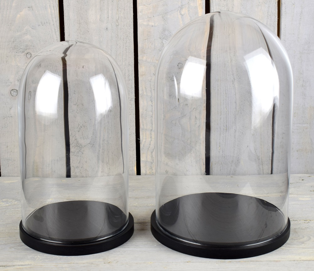 Medium Glass Dome Display Cover Cloche Black Base Height 31cm