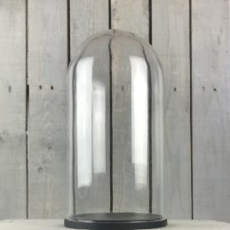 large-glass-dome-cover-cloche-display-with-black-wooden-base-height-46-cm