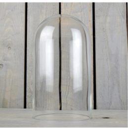 handmade-mouth-blown-clear-circular-glass-display-cloche-bell-dome-29-cm