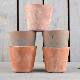 decorative-five-ceramic-pots-by-hill-interiors