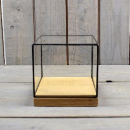 glass-and-zinc-display-showcase-box-dome-with-wooden-base