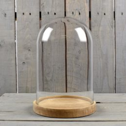 display-ornament-glass-dome-with-wooden-base-33-cm