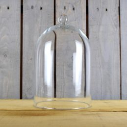 glass-display-cover-cloche-bell-jar-dome-centrepiece-27-cm
