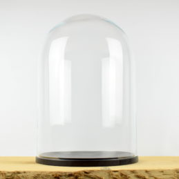 large-glass-dome-cover-cloche-display-with-wooden-black-base-height-52-cm