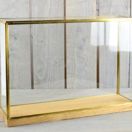 large-glass-and-brass-display-showcase-box-dome-with-wooden-base-tall-28-5-cm