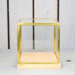 Glass and Brass Display Showcase Box Dome with Wooden Base 14.5 cm