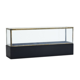 medium-glass-display-box-with-wooden-base-by-madam-stoltz