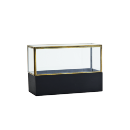 small-glass-display-box-with-wooden-base-by-madam-stoltz