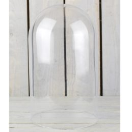 large-glass-display-cover-cloche-bell-jar-dome-30-cm