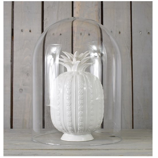 handmade-clear-circular-glass-display-cloche-bell-jar-dome-40-cm