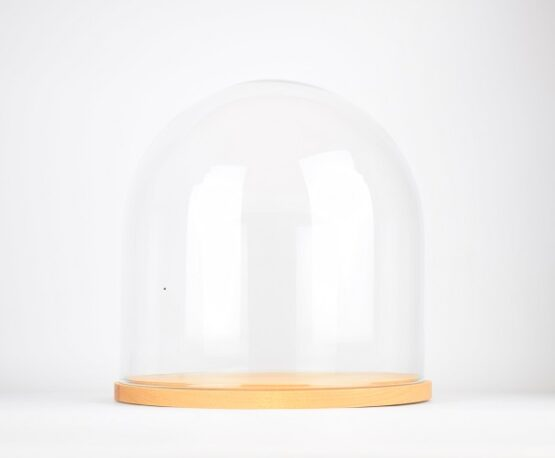 handmade-mouth-blown-clear-circular-glass-display-cloche-dome-with-wooden-base-31-5-cm