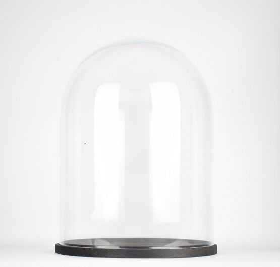 handmade-clear-circular-large-glass-display-cloche-dome-with-black-wooden-base-41-5-cm