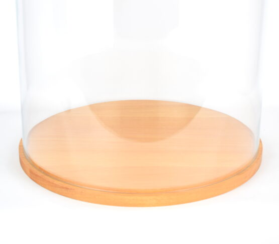 Large Glass Dome Cover Cloche Display with Wooden Base Height 55 cm